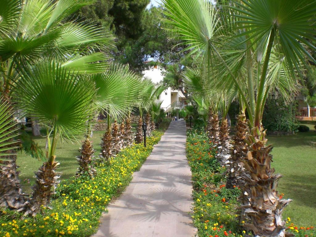 Gartenanlage im Hotel Papillon Belvil